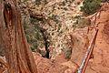 Canyon Overlook Walk; Zion National Park (3443195043).jpg