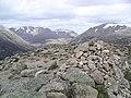Carn a' Mhaim , Munro No 95 - geograph.org.uk - 72944.jpg