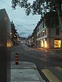 Carouge in the evening.JPG