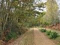 Castleman Trailway - geograph.org.uk - 659791.jpg