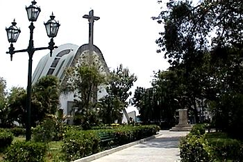 Catedra San Fernando