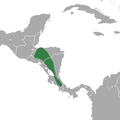 Central American Least Shrew area.png