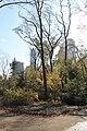 Central Park South - panoramio (16).jpg