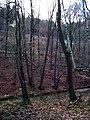 Chrastava-Andělská Hora, svah s tratí a silnicí.jpg
