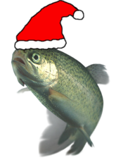 Christmas Festive trout.png