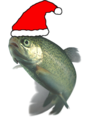 Christmas Festive trout.png