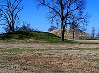 Two burial mounds rise above flat, green grass with a trees in the background.