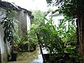 Chuva da garoa. Raining again - panoramio.jpg