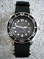 Citizen Promaster Eco-Drive AP0440-14F Diver's 200 m on a 4-ring NATO style strap.JPG