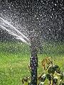 City of London Cemetery Memorial Garden sprinkler 7.jpg