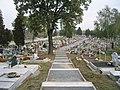 Cmentarz w Kłodnicy - panoramio.jpg