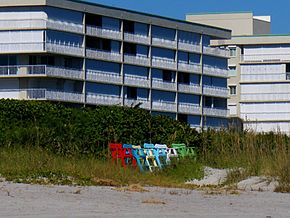 Cocoa Beach at Lori Wilson Park - Flickr - Rusty Clark (94).jpg