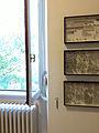 Collezione di coleotteri Museo delle Grigne di Esino Lario 6.jpg