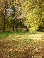 Colors of autumn 2010 (Zelenaya Roscha Ekaterinburg).jpg