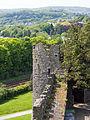 Conwy Castle (7827082434).jpg