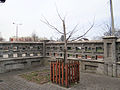 Courtyard of Basilica of the Nativity of St. Mary and St. Nicholas in Bielsk - 02.jpg
