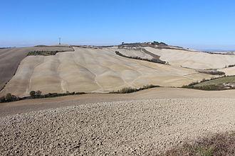 Crete Senesi - Landscape.