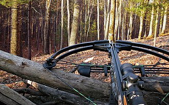 Bowhunting - Hunting crossbow
