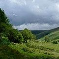 Cwm Doethie Fawr, Ceredigion - geograph.org.uk - 1417446.jpg