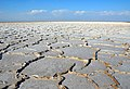Damghan - Dasht Kavir - Haj Aligholi desert - panoramio.jpg