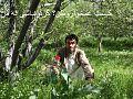 Darwaz, Afghanistan - panoramio.jpg