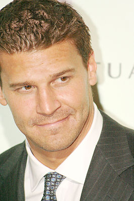 David Boreanaz in 2006