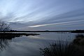 Dawn Clouds (28909512322).jpg