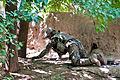 Defense.gov photo essay 120730-A-VB107-219.jpg