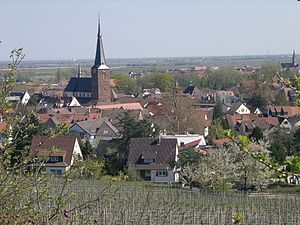 Deidesheim - Deidesheim, seen from the northwest