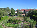 Dellfeld August 2012.JPG