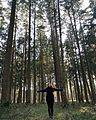 Der Charme des bayerischen Wald.jpg