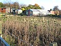 Derelict allotments at Trimdon Colliery - geograph.org.uk - 278953.jpg