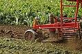 Dewulf R7050 at Werktuigendagen 2005 c.jpg