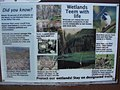 Did you know? Wetlands Team with Life sign in Scad Valley, Aug 10.jpg