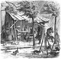 Die Gartenlaube (1870) b 804.jpg
