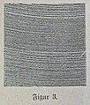 Die Gartenlaube (1891) b 197 3.jpg