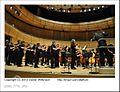 District orchestra (8710922549).jpg