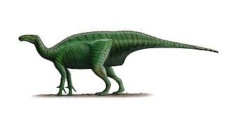 Mantellisaurus - Restoration based on specimen IRSNB 1551