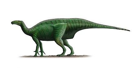 dlaczego węgiel-14 nie jest używany do datowania kości dinozaurów
