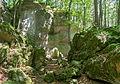 Dolomitfelsen am Steinberg 04.jpg