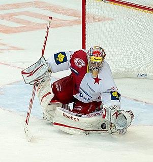 Dominik Furch Czech ice hockey player