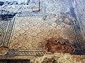 Domus chirurgo mosaici 4.jpg
