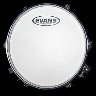 Drumhead - Drumhead mounted on a drum