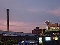 Durham Bulls Athletic Park Skyline.jpg