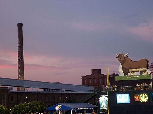 Durham Bulls Athletic Park Skyline