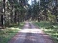 Dusetų sen., Lithuania - panoramio (105).jpg