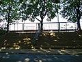 Dynamo stadium53.jpg
