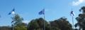 EST EU FIN flags.PNG