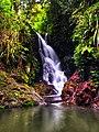 Elabana Falls, Lamington National Park.jpg