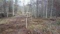 Electric Fence (Glen Lui) on Mar Lodge Estate (15MAR13) (14).jpg